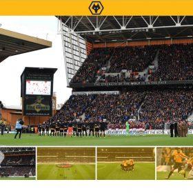 """""""Wolves FC"""", ウルヴスFC イングランドのプロサッカークラブのサイト"""